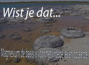 8163-58397_magnesium_tekort_aarde_BEGIN